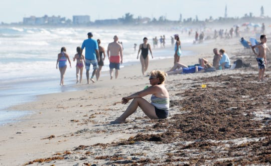 More and more people decided to hit the beach on Saturday, including the Lori Wilson Park area. Virtually all of the thousands of dead fish lying along some areas of Cocoa Beach from red tide week were cleaned up by volunteers and clean up crews, and the afternoon crowds were growing.