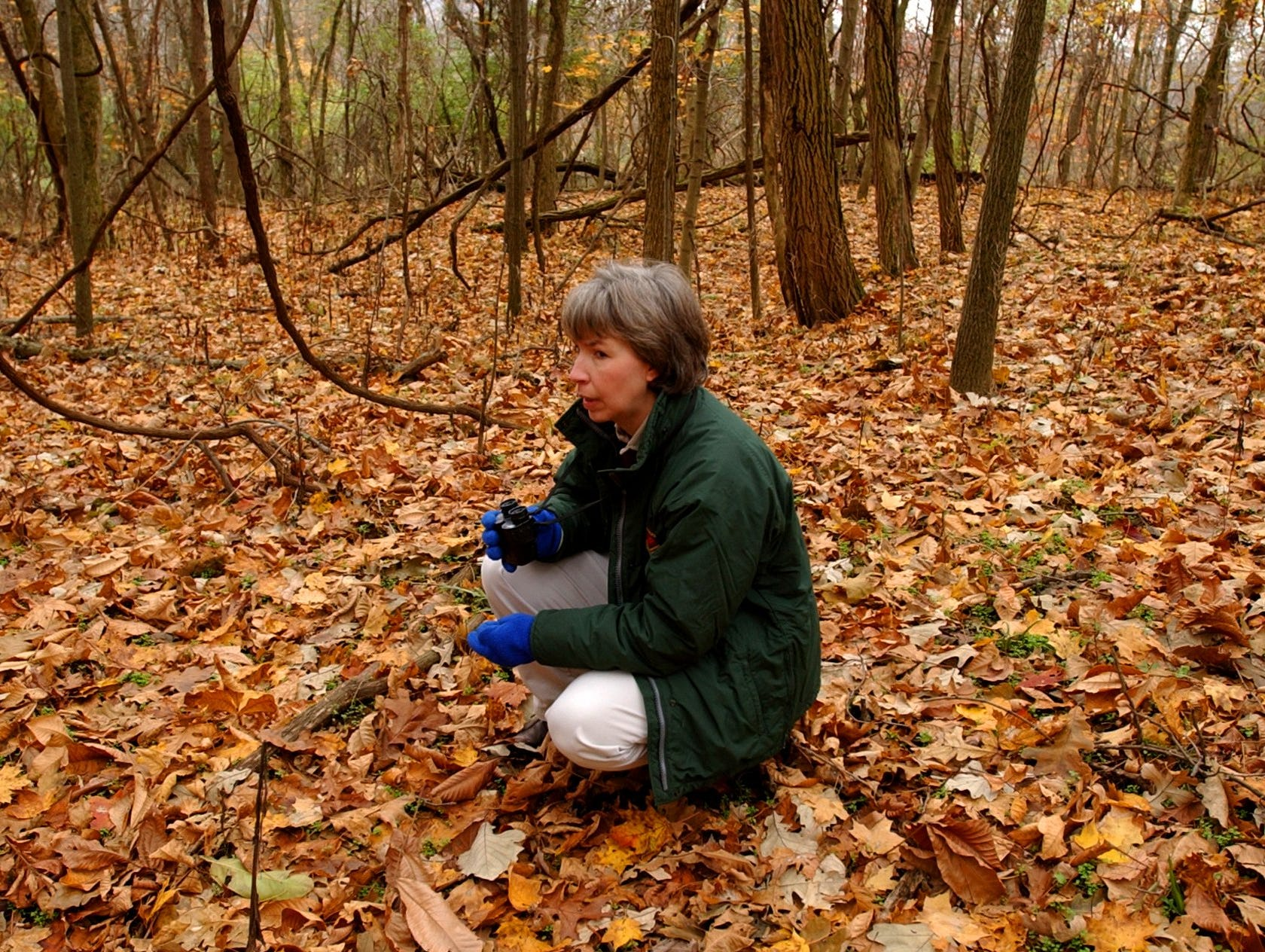 Hamilton County Park District Naturalist Carol Mundy pauses and remains quiet and motionless during an unsuccessful search for wild turkeys at Miami Whitewater Forest in 2002.