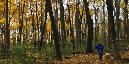 hamco parks autumn 5