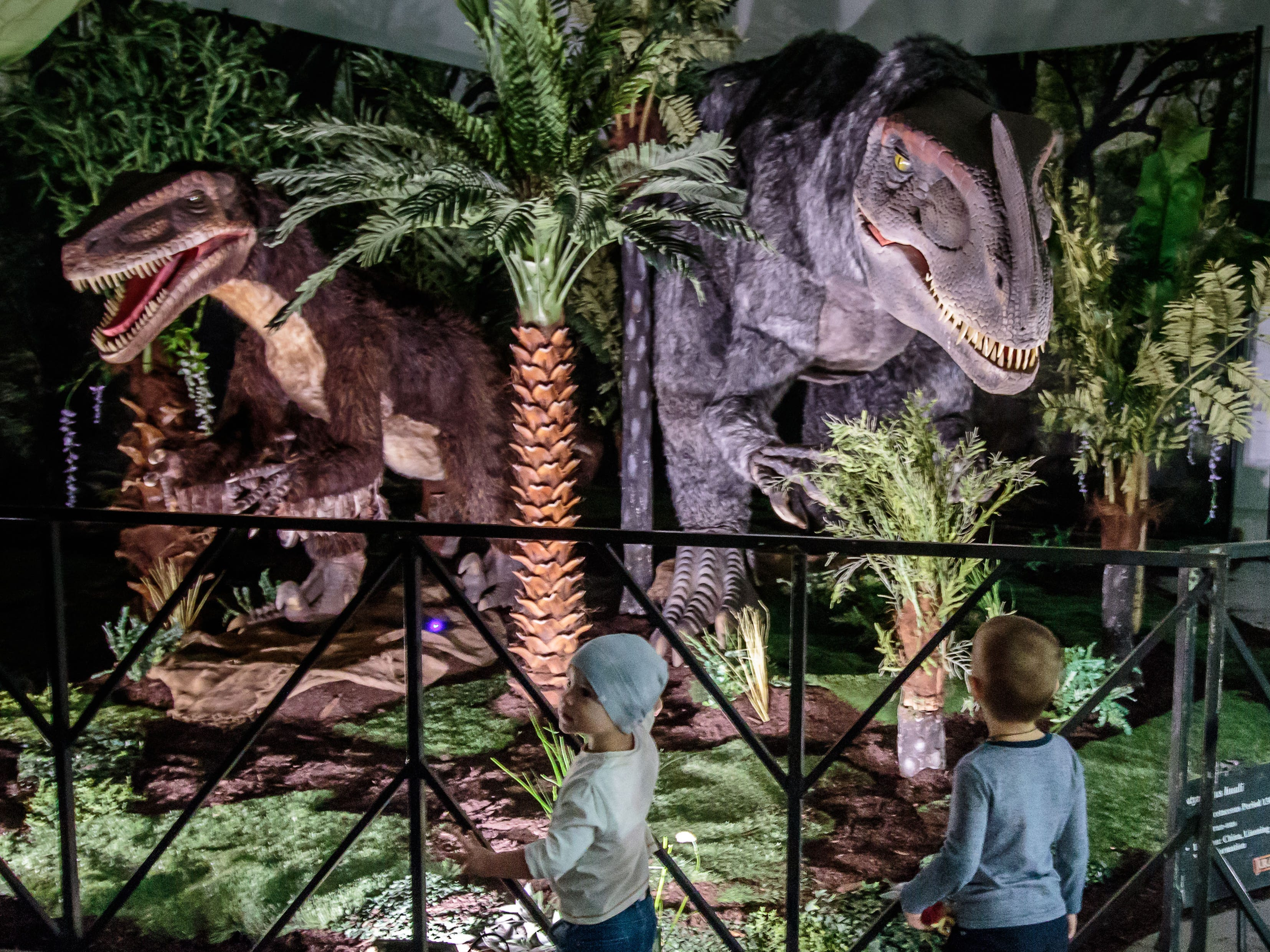 Nikita Pryzov (left), 2, and Max Soroka, 3, of Wisconsin Dells, check out two animatronic dinosaurs during their visit to Jurassic Quest at Wisconsin State Fair Park in West Allis on Sunday, Oct. 21, 2018. The three-day event featured more than 80 life-sized animatronic dinosaurs, fossils, games, crafts, bounce houses and more.