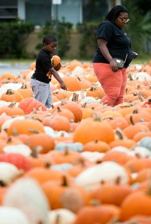 Ryan Crump and her son, Aidyn Davis, shop for pumpkins Tuesday at Cokesbury United Methodist Church on Ninth Ave.