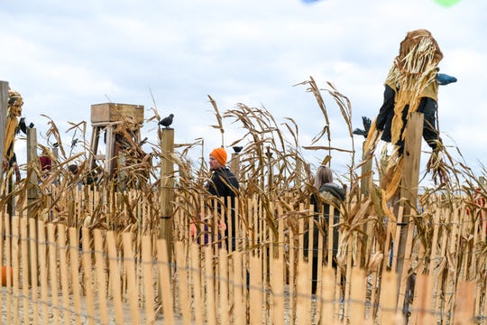 Ocean City's beach maze draws kids and adults for fall fun on Saturday, Oct 20, 2018.
