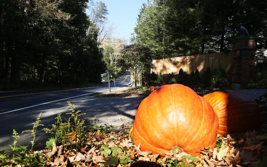 Pumpkins outside the entrance to George Soros' house on Cantitoe Street in Katonah Oct. 23, 2018.