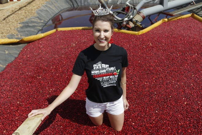 Miss Wisconsin Rapids Hannah Ashbeck takes a dip in the cranberry bog Tuesday at the 2018 Wood County Farm Technology Days.   Photos by Tori Schneider/USA TODAY NETWORK-Wisconsin Miss Wisconsin Rapids Hannah Ashbeck takes a dip in the cranberry bog at the 2018 Wood County Farm Technology Days Tuesday, July 10, 2018.