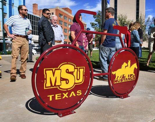 Msu Bike Rack Downtown 5