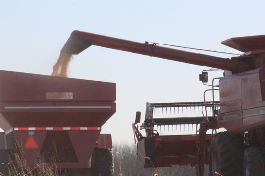 A wet fall hampered the corn harvest in Wisconsin.