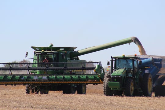 A combine empties a load of soybeans into an awaiting grain cart in a field just off Highway 151 in the town of Waupun.