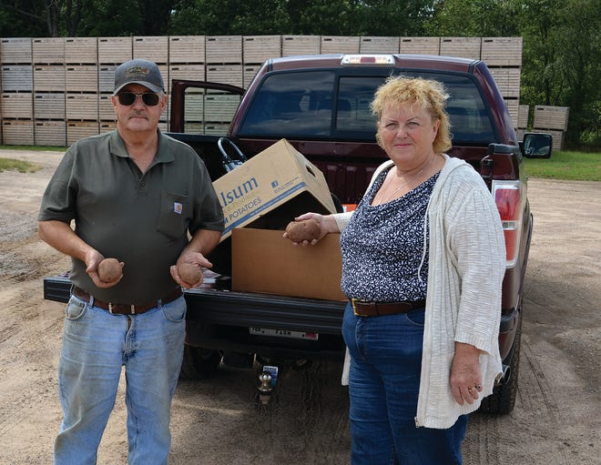 Gary and Lynda hold some of their red potatoes grown for Alsum.