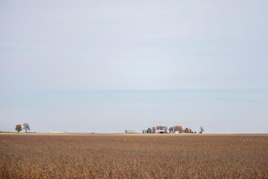 Soybeans ready for harvest on a farm in Calhoun County on Wednesday, Oct. 24, 2018.