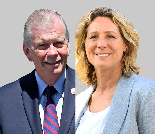 Republican Tim Walberg, left, and Democrat Gretchen Driskell are running for Michigan's 7th Congressional district.