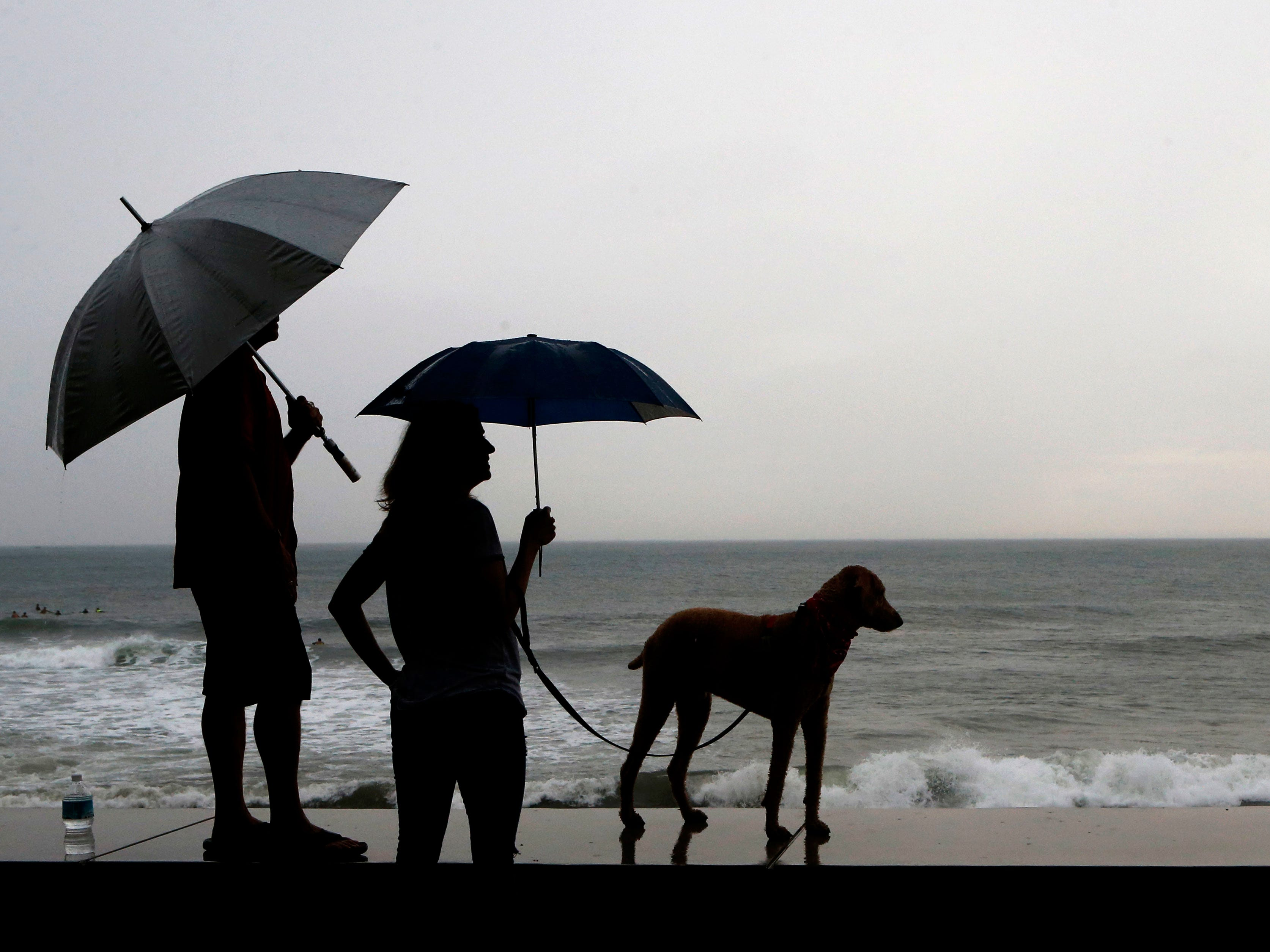 A couple and their dog stand on the seawall prior the landfall of Hurricane Willa, in Mazatlan, Mexico, Tuesday, Oct. 23, 2018. Emergency officials said they evacuated more than 4,250 people in coastal towns and set up 58 shelters ahead of the dangerous Category 3 storm.