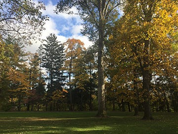 With its more than 1,700 trees, Spiegel Grove, the grounds of the Hayes Presidential Library & Museums, has been officially designated as anarboretum.