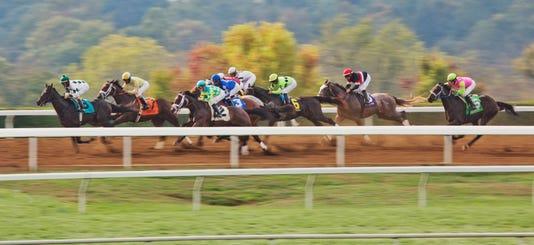 Breeders Cup Horse Race