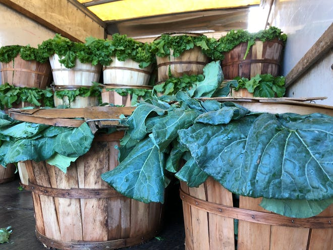 The Turnip Greens Festival is coming up this weekend at the Nashville Farmers' Market.