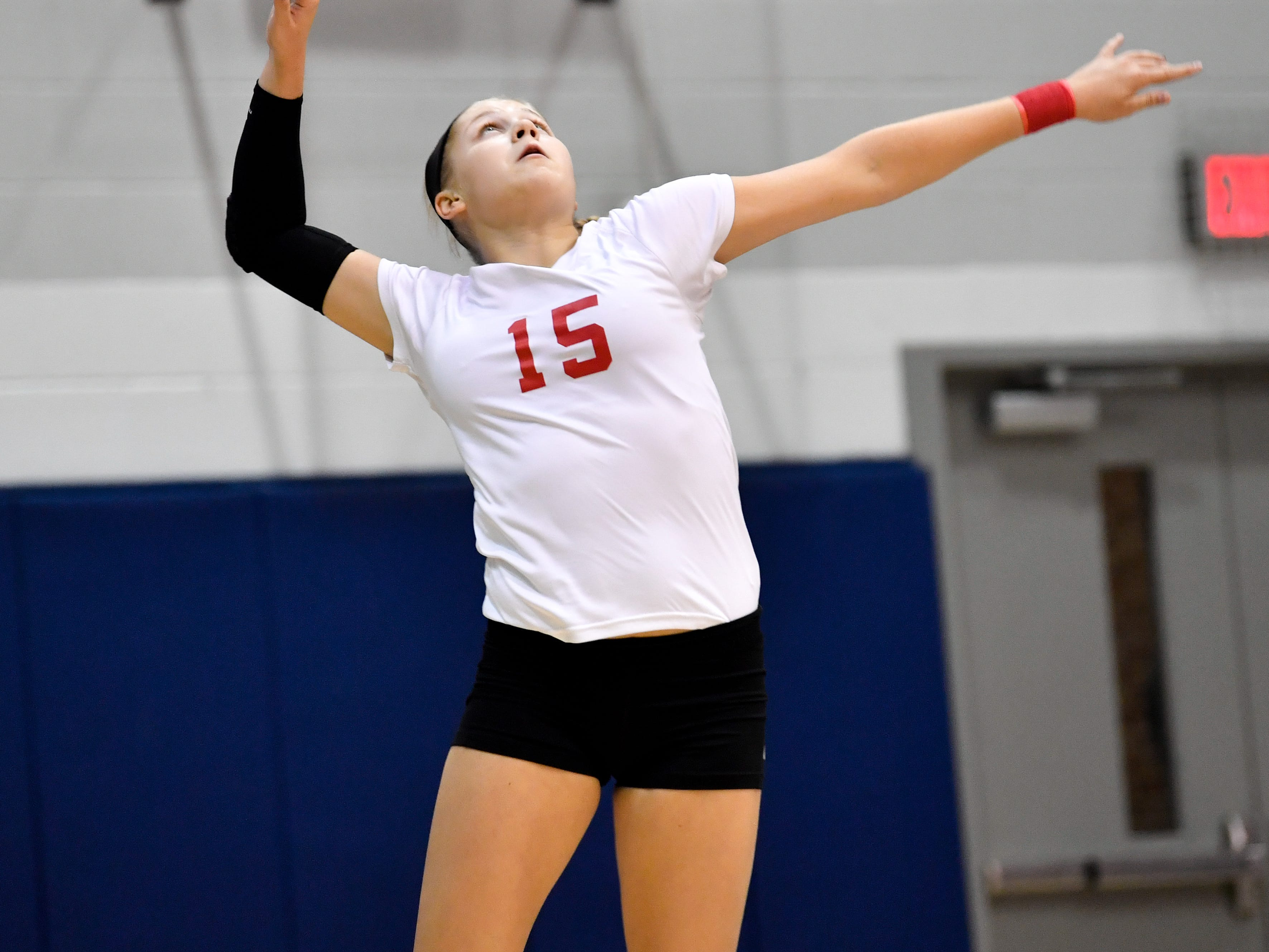 Abby Diehl (15) serves the ball during the YAIAA league volleyball tournament semifinals between West York and Dover, Tuesday, October 23, 2018. The Bulldogs defeated the Eagles 3-1.
