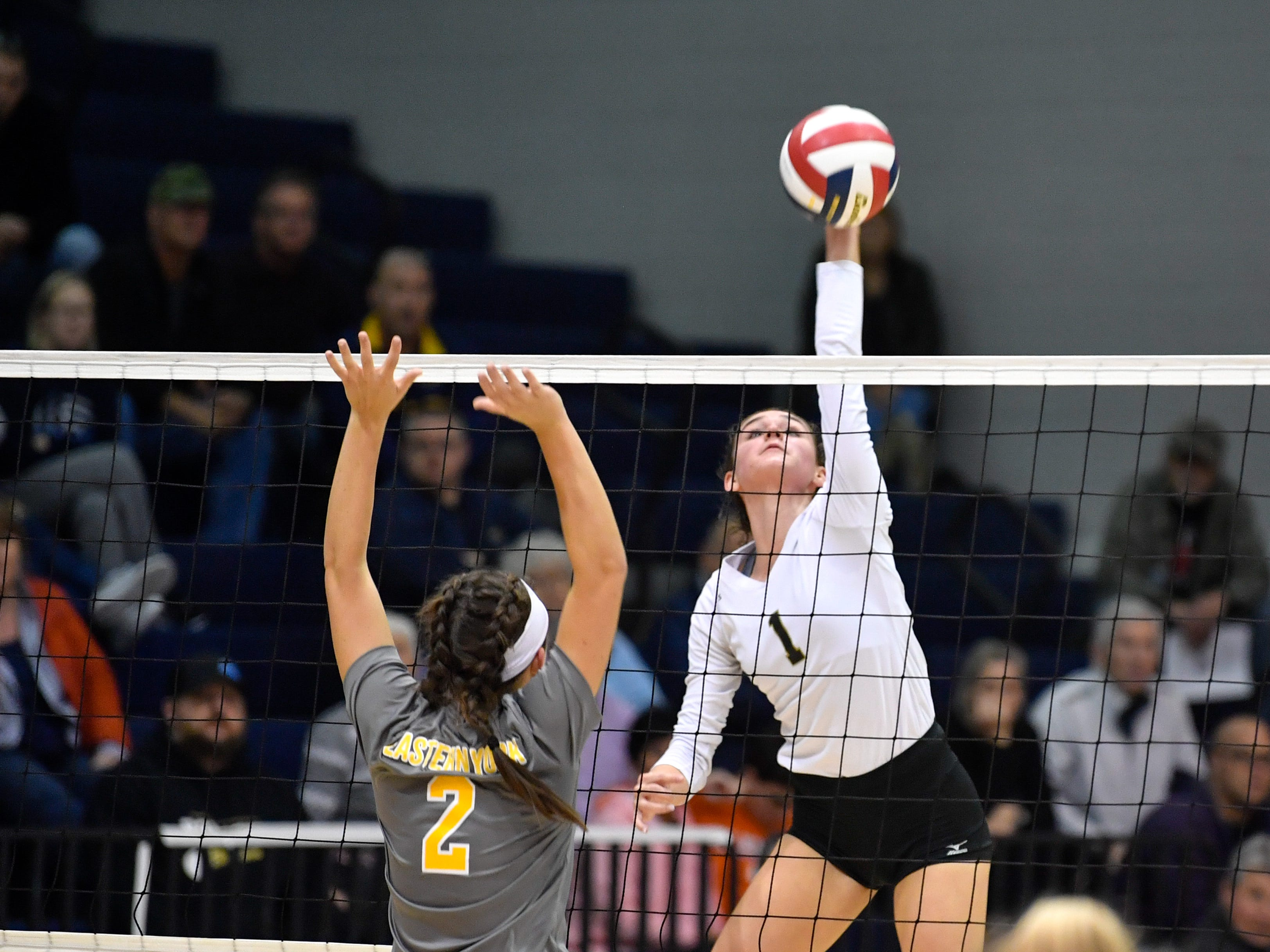 Maddie Clabaugh (1) looks to score a point during the YAIAA league volleyball tournament semifinals between Eastern York and Delone Catholic, Tuesday, October 23, 2018. The Squirettes defeated the Golden Knights 3-2.