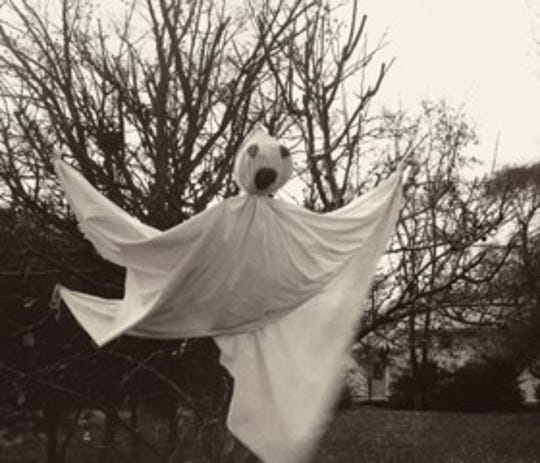 Club Breen's traditional tree ghost.