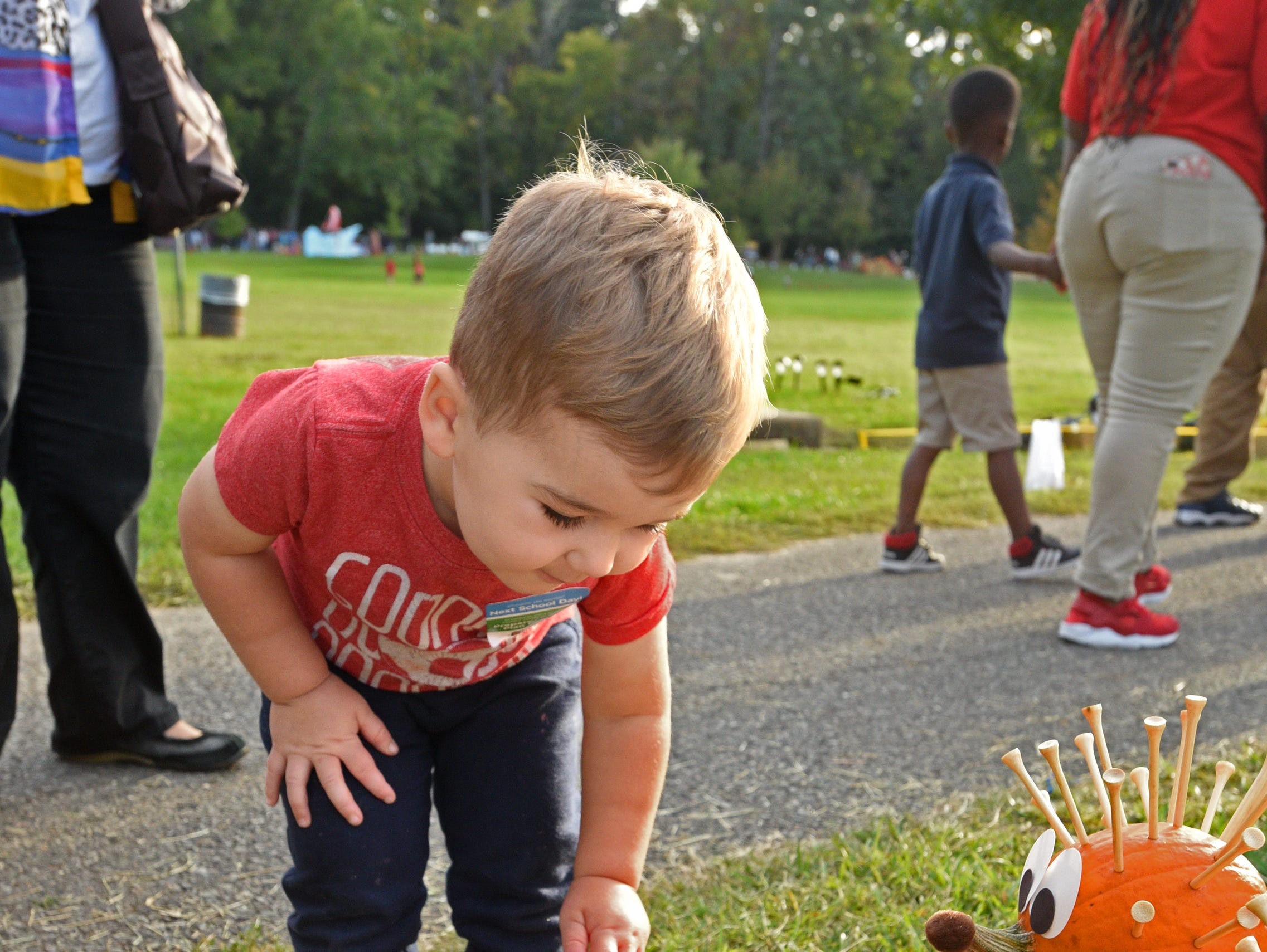 Carson Baker checks out a pumpkin at the 26th Annual Punpkin Shine on Line held Tuesday at Betty Virginia Park.