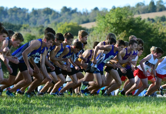 Fort Defiance runners break from the line for the start of the boys varsity race at the Valley District Cross Country Championships on Tuesday, Oct. 23, 2018, at Mill Place Park in Verona, Va.