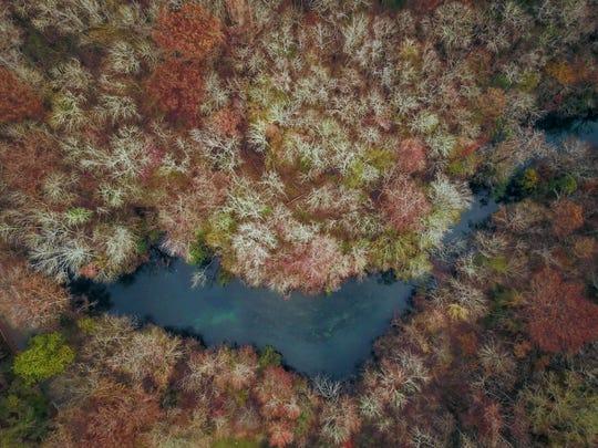 An aerial image of Wakulla Springs.