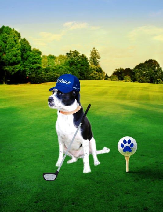 Brinkley Golfer