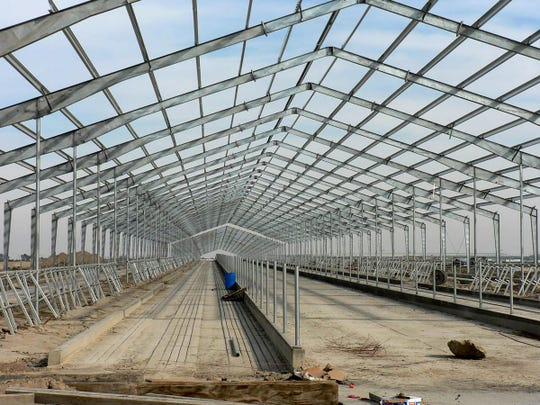A 5,000 cow dairy being built in Fresno county California in about 2003.