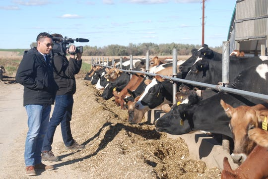 Getting shots of dairy cows in the autumn sunshine proved a good photo op for CTV reporter Richard Madan and his cameraman Marley Parker. They stopped by a Dane County dairy farm to talk about what the new USMCA trade deal may mean to dairy farmers, since the dairy industry was front and center in the trade talks.