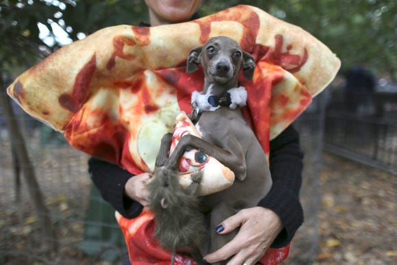 Twiggy the Italian greyhound can pull off Pizza Rat. A girl in a skimpy dress cannot mainly because pizza and vermin aren't sexy.