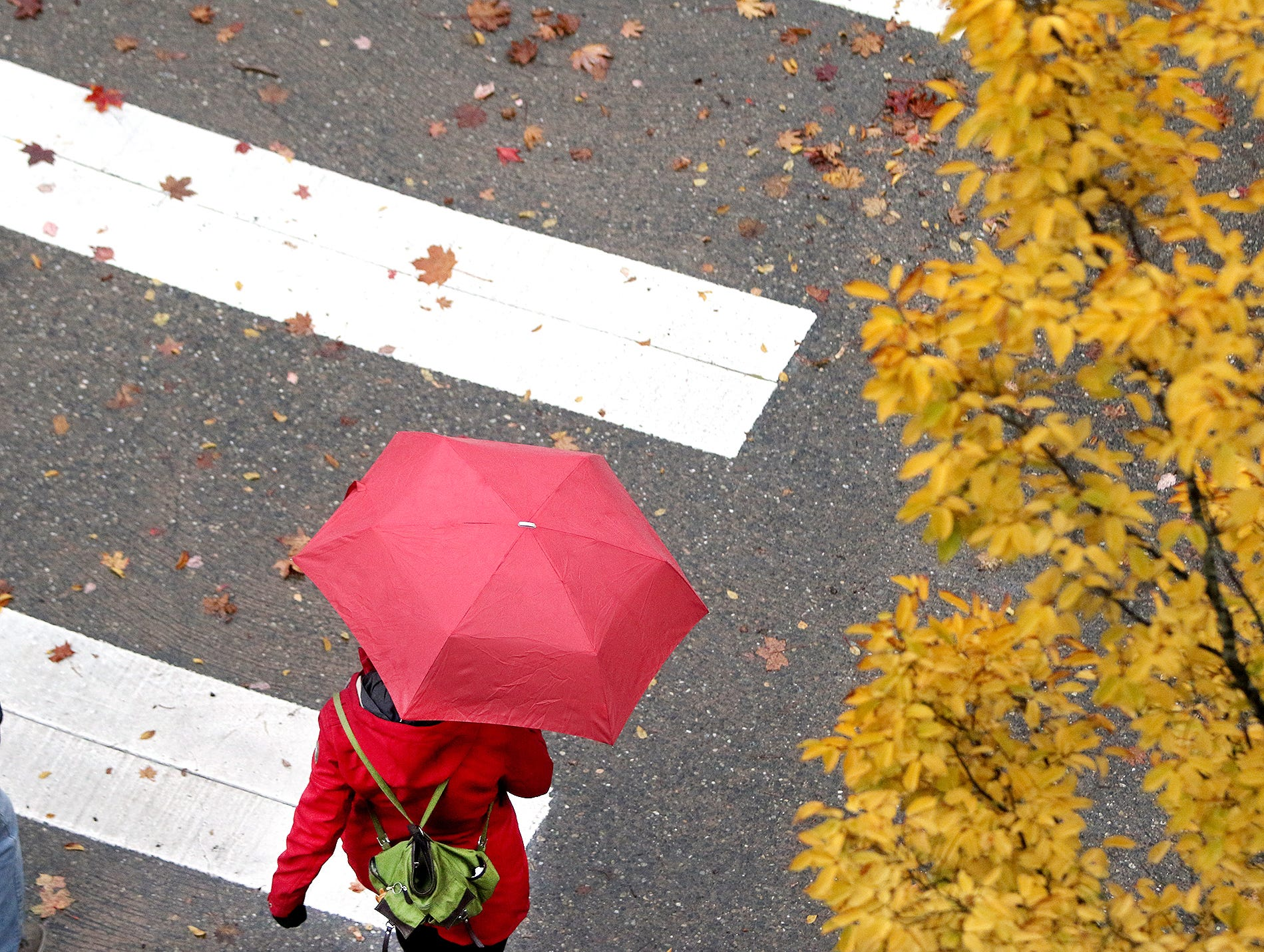 A rainy fall day on Thursday, October, 25, 2018, as a pedestrian walks down Washington Ave, at Fourth Street in Bremerton.