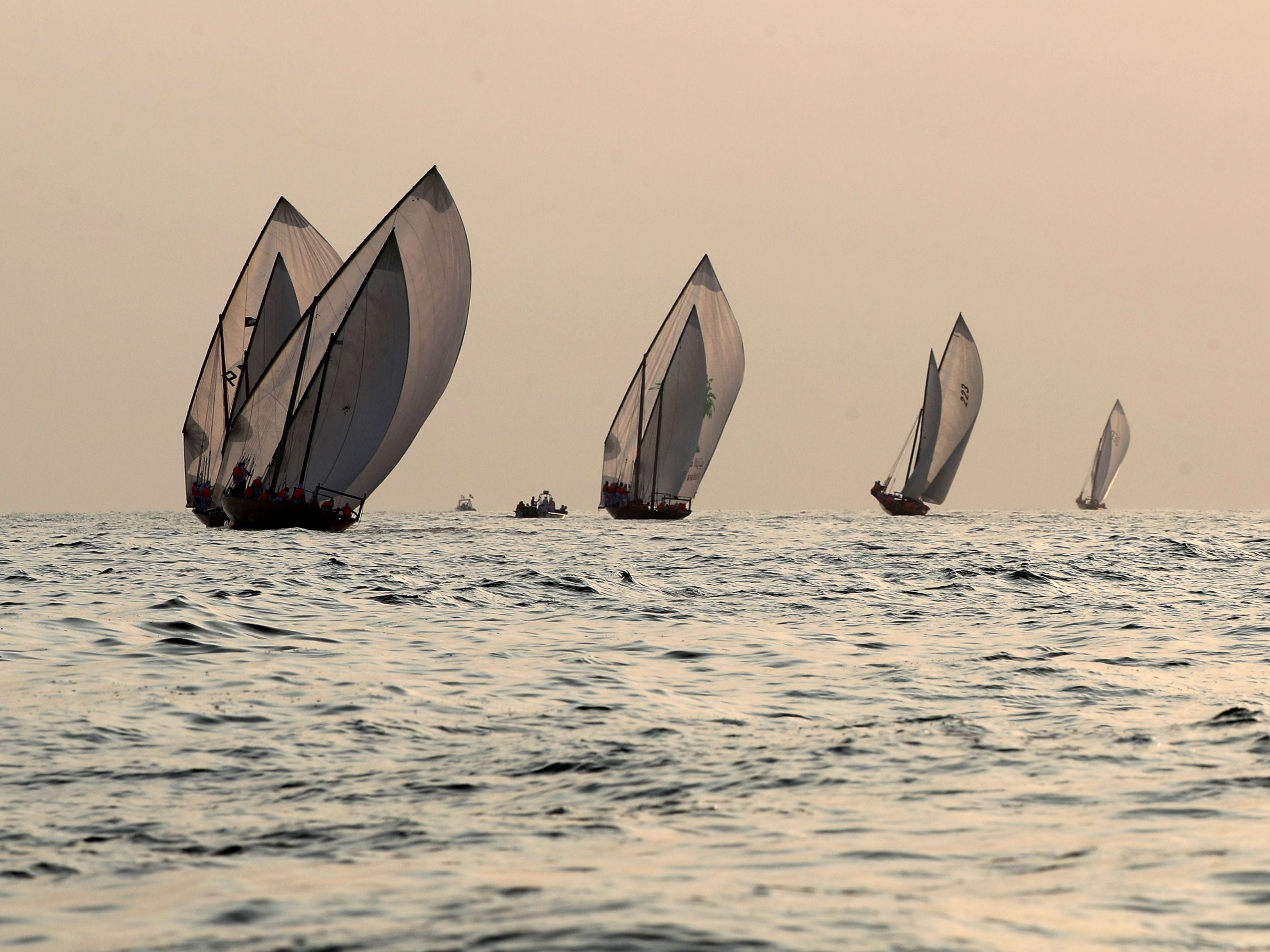 Emirati competitors sail their dhows as they take part in the Dalma Sailing Festival  , off of the coast of Dalma island in the Persian Gulf, about 40 kelometres off of the Emirati capital Abu Dhabi on October 25, 2018.