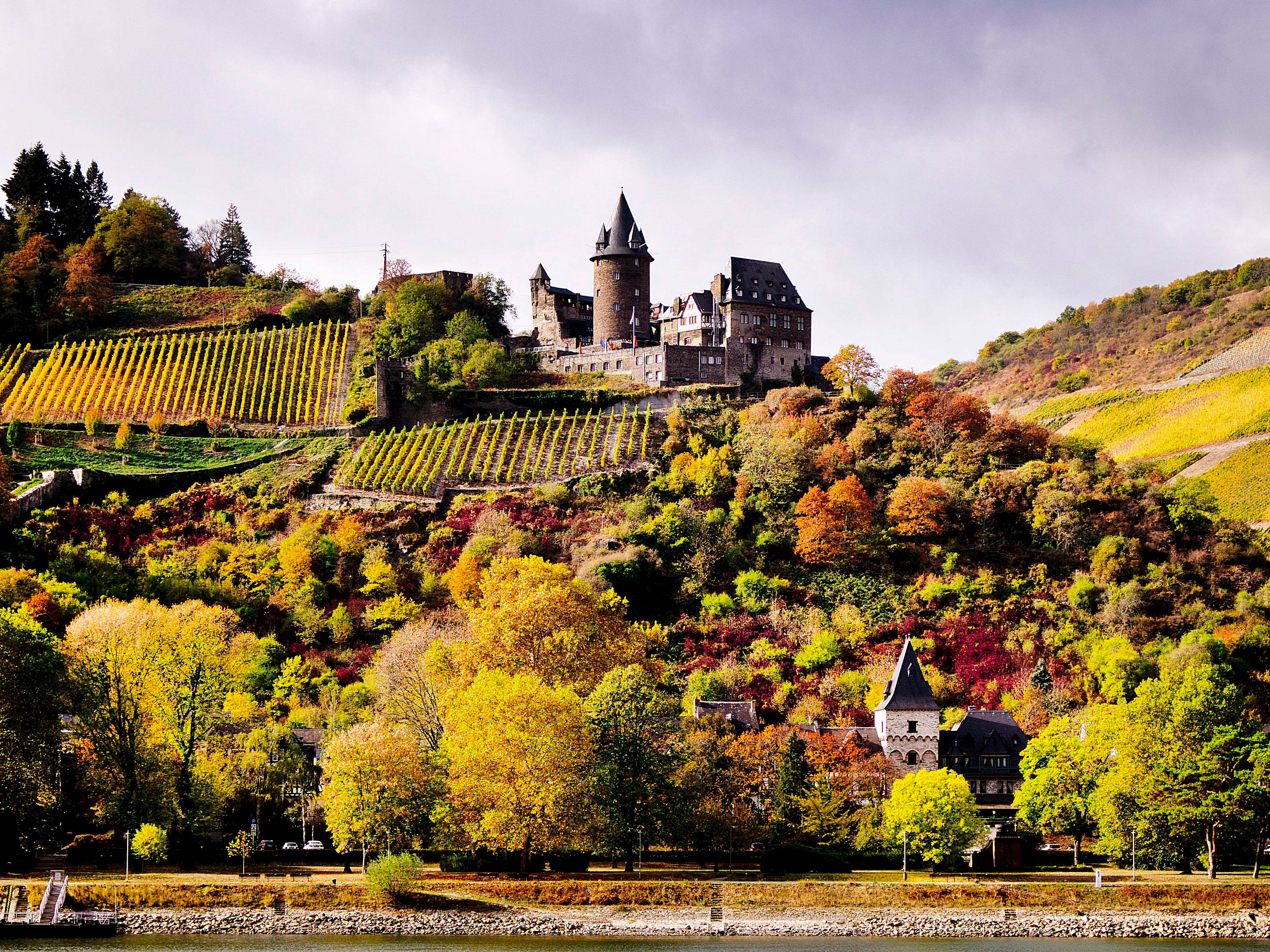 An old castle is seen above colorful trees and vineyard looking over the river Rhine near the village of Bacharach, Germany, on Wednesday, Oct. 24, 2018.