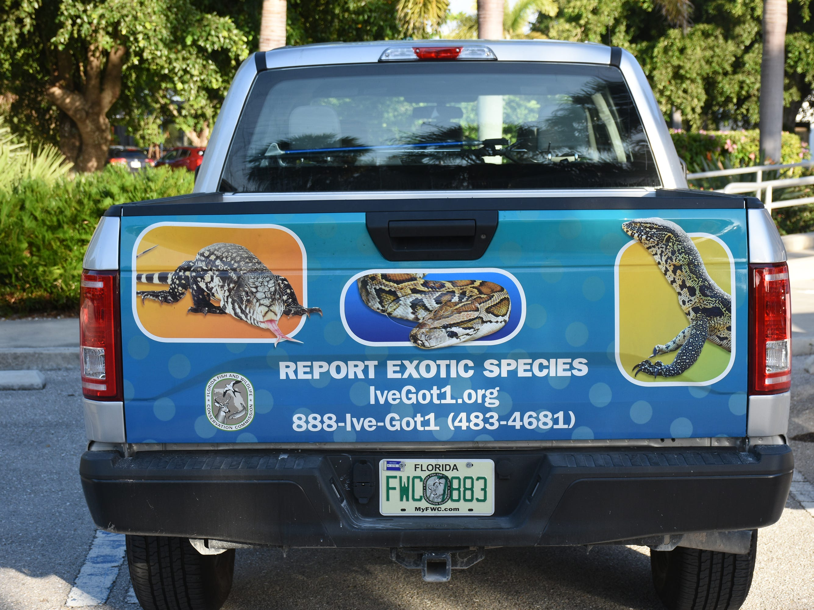 An FWC vehicle tells how to report exotic species. The City of Marco Island hosted a presentation on invasive iguanas conducted by the Florida Fish and Wildlife Conservation Commission on Wednesday evening in the Biles Community Room.