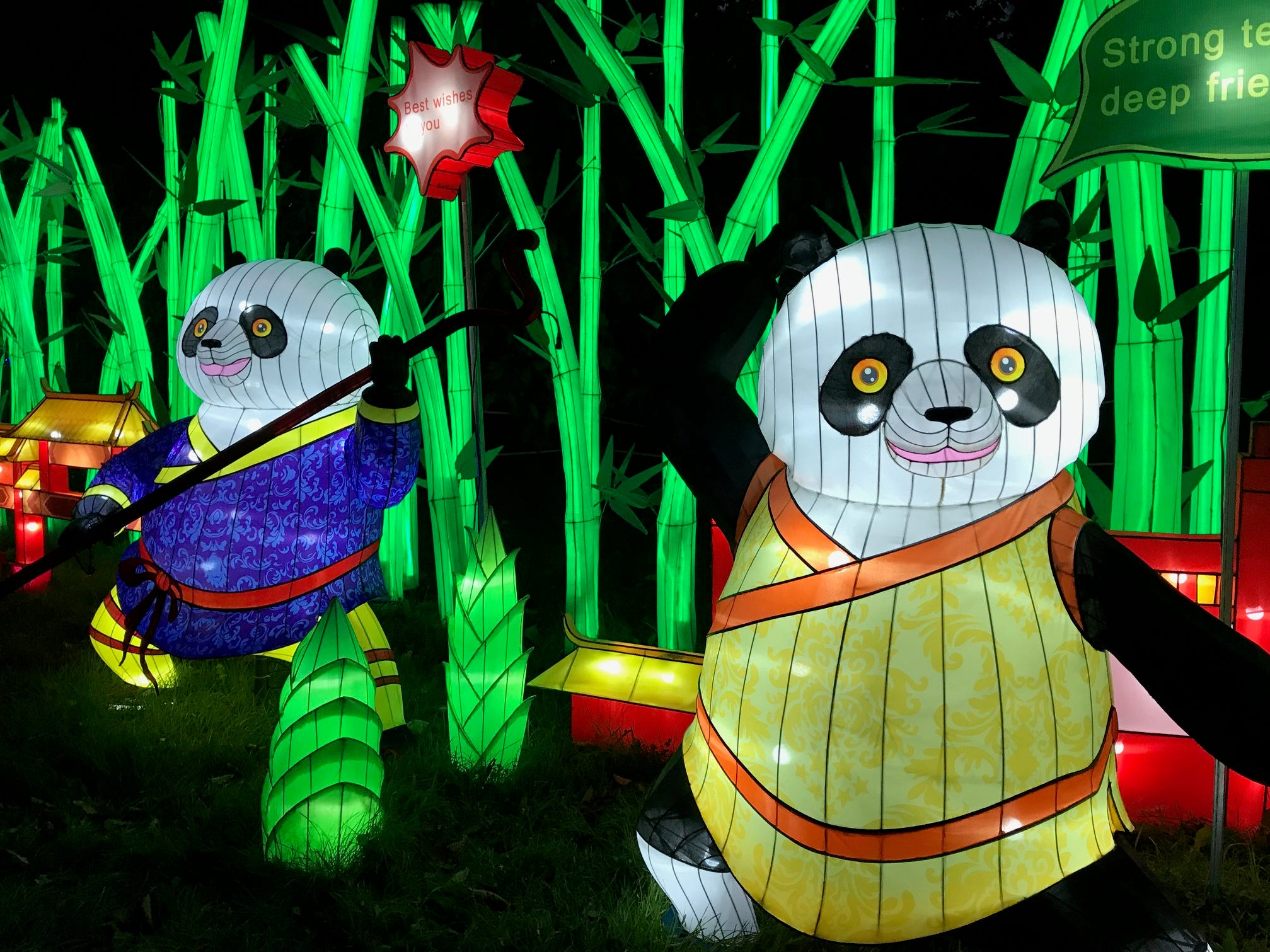 The pandas at China Lights like to dance. There are 45 lantern displays at Boerner Botanical Gardens in Hales Corners, including five centered around pandas.