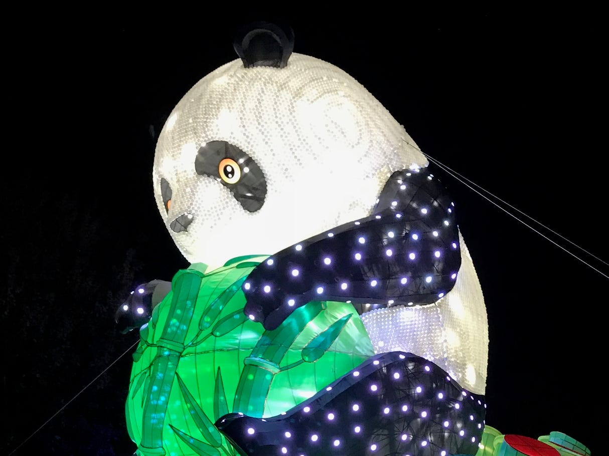 Visitors to the 2018 China Lights lantern festival at Boerner Botanical Gardens are greeted by a three-story-tall panda made from thousands of ping-pong balls. Tickets for the event can be purchased online at www.ChinaLights.org and are good for any day the festival is open.