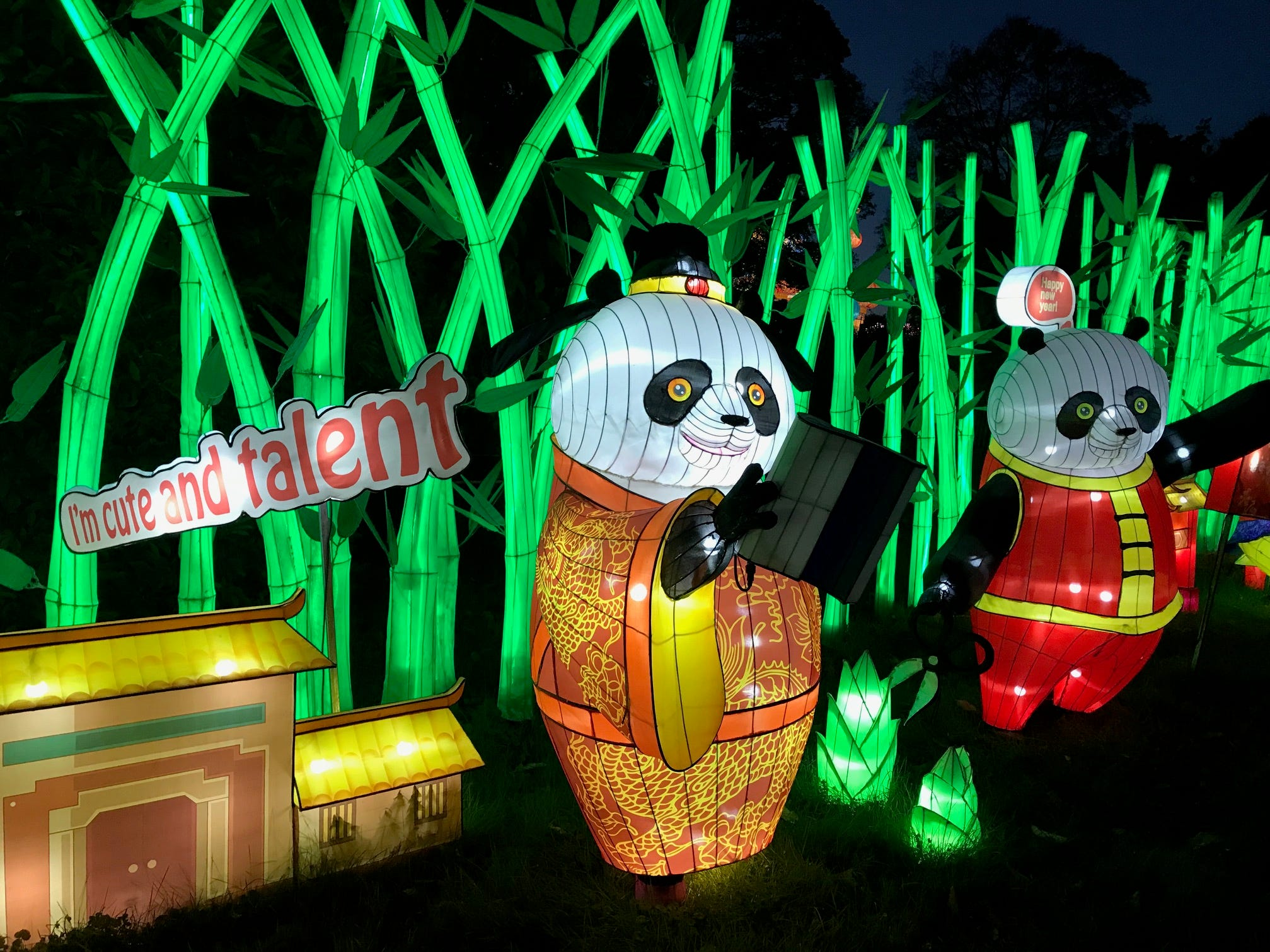 With bamboo stalks serving as the backdrop, pandas are the featured attraction at the China Lights lantern festival. There are 45 sculptural displays on the grounds of the Boerner Botanical Gardens in Hales Corners.