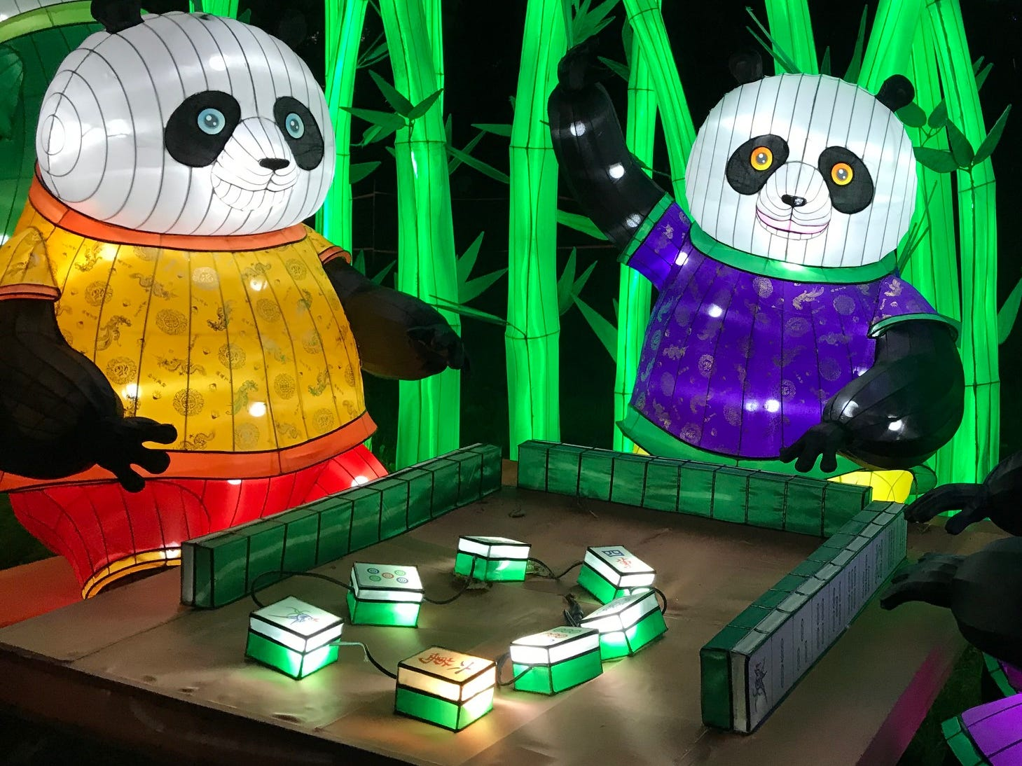 The pandas at the China Lights lantern festival sure love to play. This was the third straight year artisans from Zigong City, China, have come here to create lanterns for the festival.