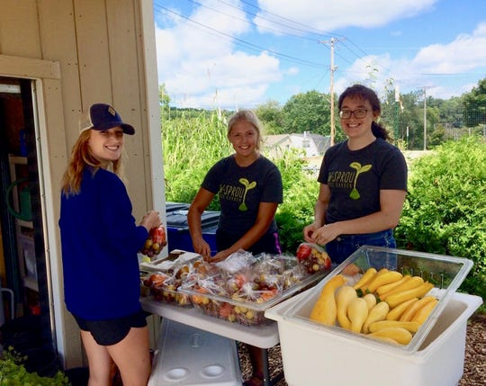 UW-Stout students Christina Hammerstrom, Alyssa Weber and Laura Donovan pack vegetables for their CSA customers on harvest day.