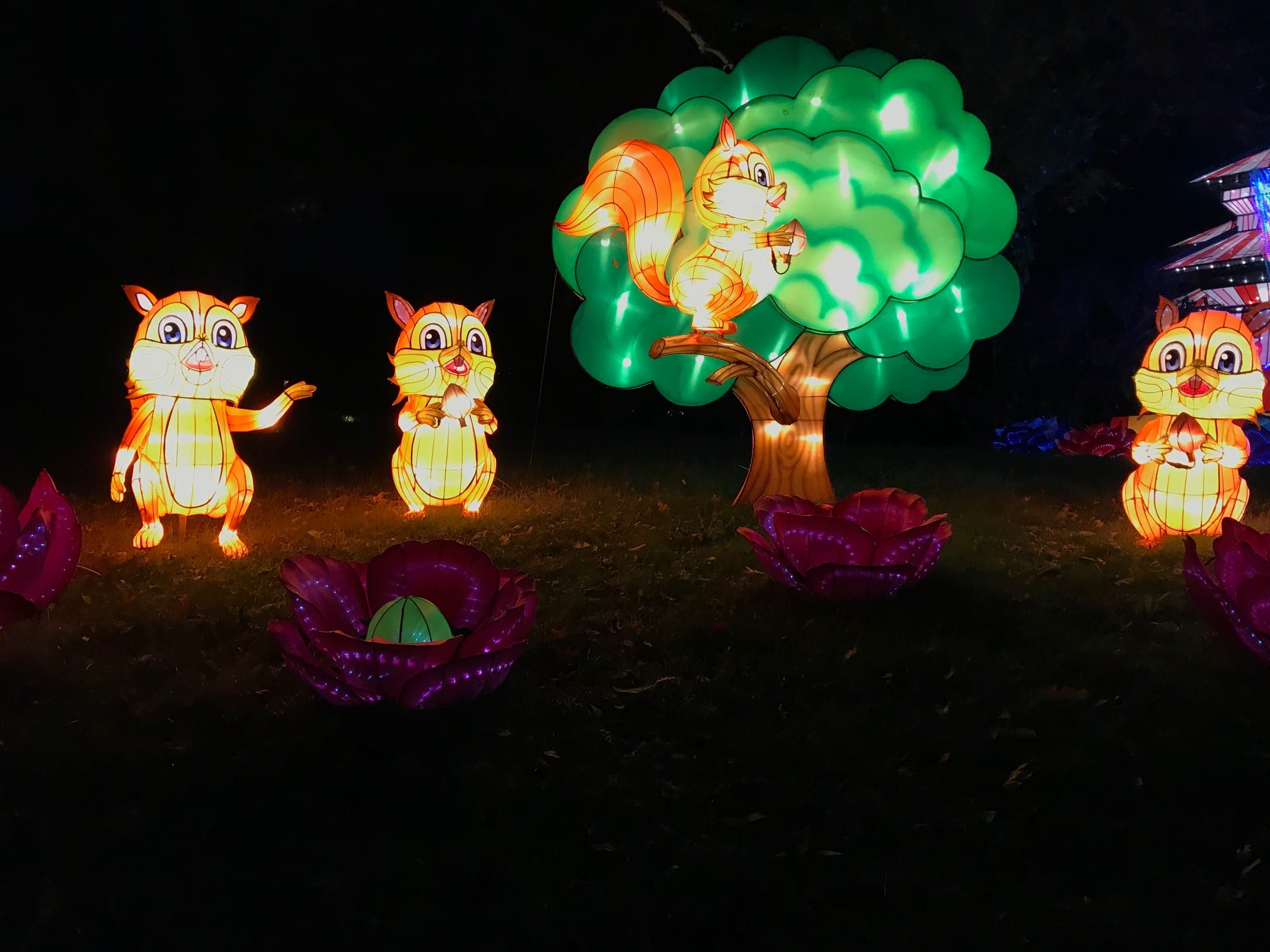 Squirrel Land is a cute display at the 2018 China Lights lantern festival. Children will like this display just as they will enjoy an interactive exhibit at the end of the festival on the grounds of the Boerner Botanical Gardens.