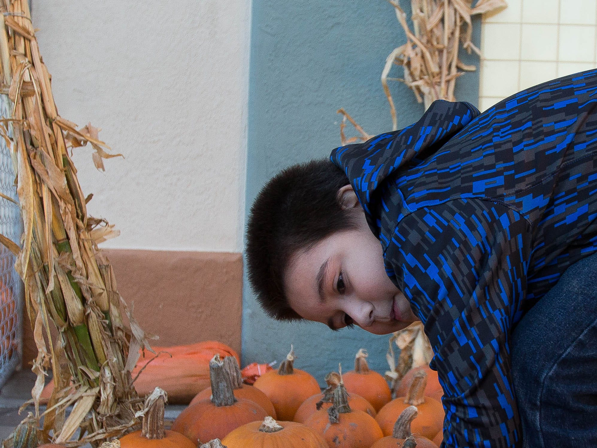 RJ Garcia, 6, looking over pumpkins in the pumpkin patch outside the Rio Grande Theater, part of the Farmers Market Fall Fest held at the Plaza de Las Cruces, Wednesday October 24, 2018.