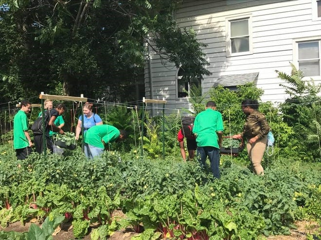 St. Mark's & St. John's Episcopal Church on Culver Road have more than 100 raised beds in seven garden plots, mostly in the Beechwood neighborhood.