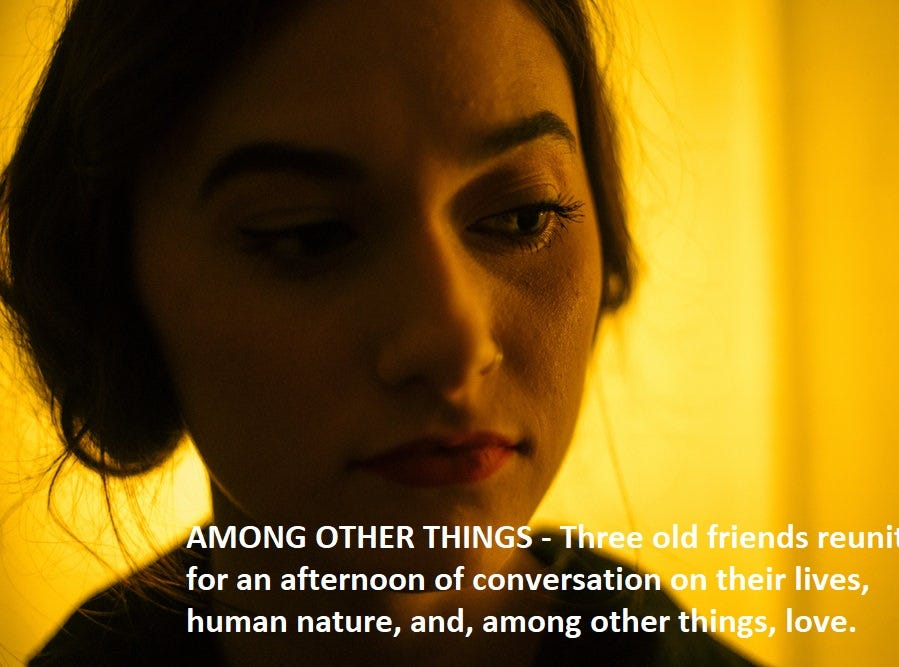 """""""Among Other Things"""" dir. Noah Dixon and Drew Johnson"""