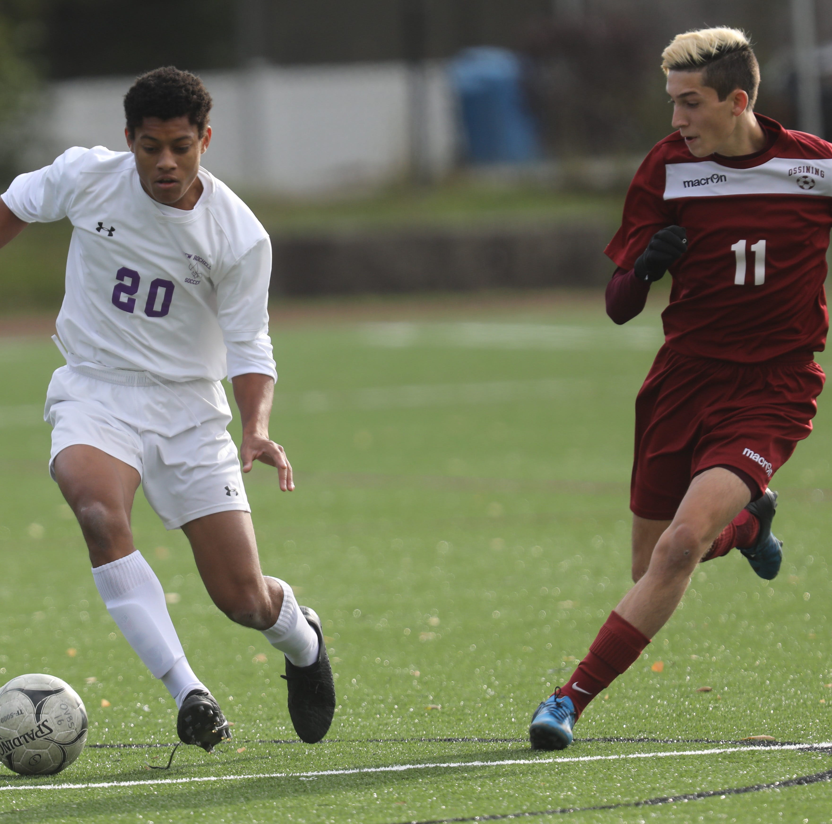 Boys soccer: Coaches honor all-state, all-section picks