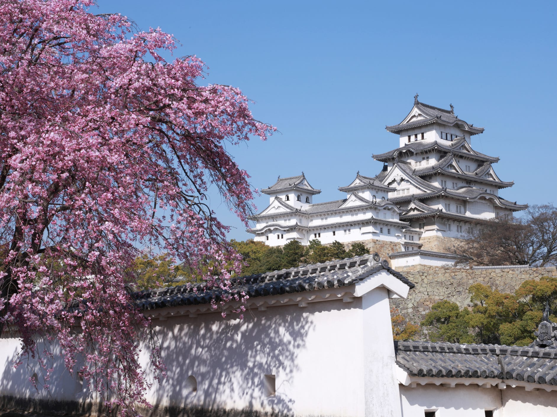 Himeji Castle is also one of Japan's best places for cherry blossom viewing, though at this time of year, it can get very crowded.