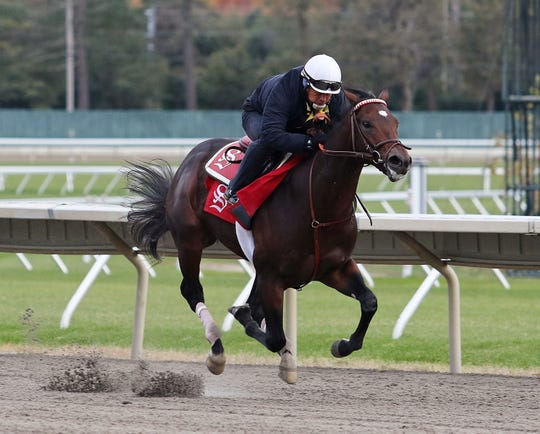 Breeders' Cup Juvenile contender Mind Control, with exercise rider Benny Sanchez riding, put in his final work at Monmouth Park in Oceanport, New Jersey on Friday morning October 26, 2018.  Mind Control will compete on Friday November 2, 2018 in the $2,000,000 Sentient Jet Juvenile at Churchill Downs in Louisville, Kentucky.