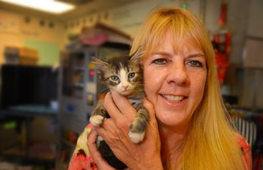 Theresa Clifton, executive director for the Brevard Humane Society.