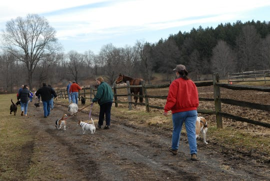 Dog walks are heldon the trails at Lord Stirling Stable, 256 South Maple Ave.in the Basking Ridge section of Bernards every Saturday morning.