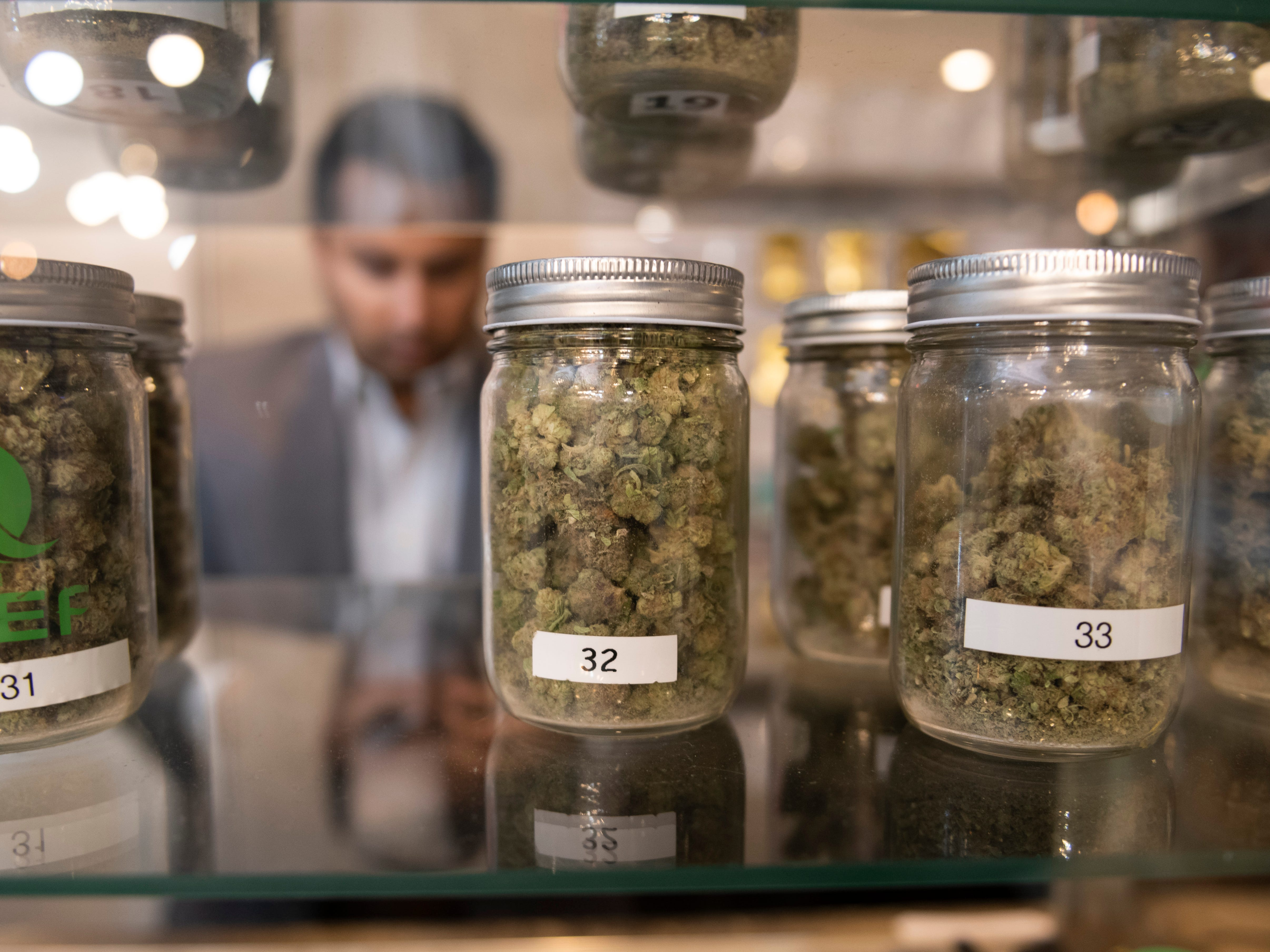 Proposal 1 would allow adultsover the age of 21 to possess up to 2.5 ounces of marijuana and grow up to 12 plants per household.