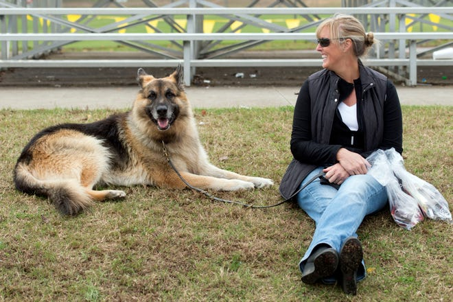 Kim Kauffman and Legend, a Shiloh Shepherd, at Young-Williams Animal Shelter's Furry Fall Festival on Sunday, November 8, 2015.