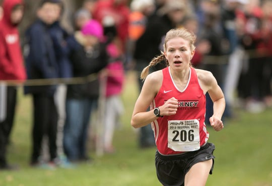 Pinckney's Noelle Adriaens ran alone up front to win the regional cross country championship in 18:13.5.