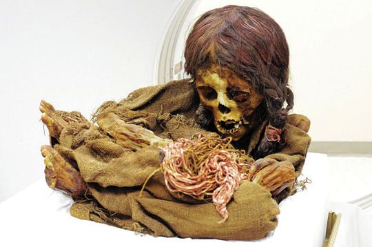 The Indianapolis Oddities & Curiosities Expo will include displays of jewelry made from animal bones, wet specimens, mummies and more.